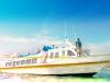 Marina Srikandi 8 Boat
